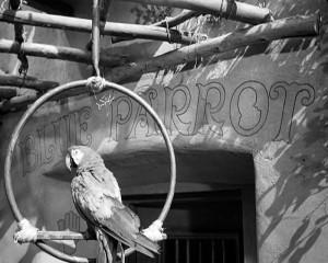 Fotograma de la película, que inspiró el nombre del bar.