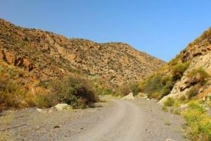 Camino-playa-granatillas5